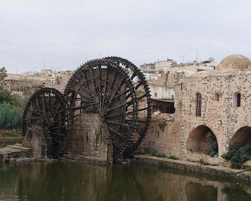 Hama 2010
