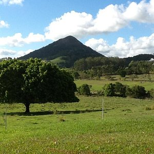 Mount Cooroy from a distance