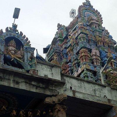 Gopuram view