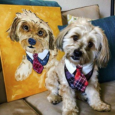 Paint Your Pet at PWAT Panama City