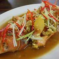 Steamed Red Coral Grouper