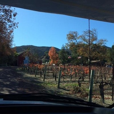 Driveway to Mosby Winery