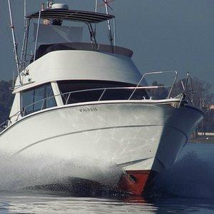 Barco Rodman 1250 navegando en Marbella