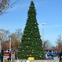 Christmas Tree in Atlanta and needless to say, no snow