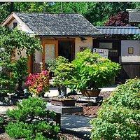 Bonsai Garden and Museum at Lake Merritt