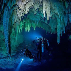 .The Pit Cenote is a great dive with so much in offer. We love this place! Thanks Sergio for thi