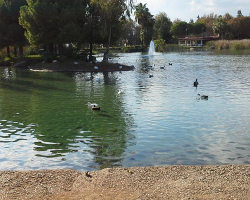 mooi vijver in falez park