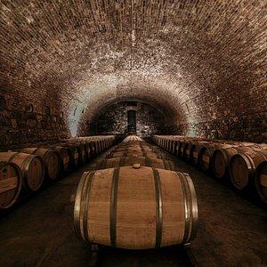 CARO cellar