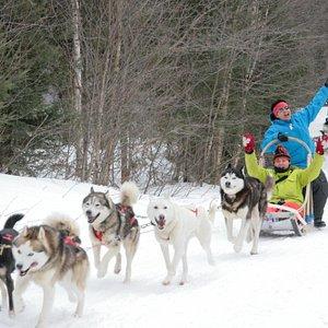 Réservez votre aventure inoubliable en traîneau à chiens à la Pourvoirie du Lac-Beauport Québec