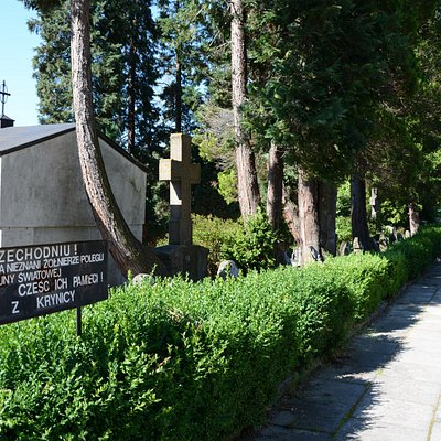 Military Cemetery no.346 in Krynica