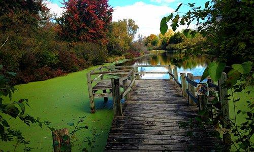 Pond at Bubolz