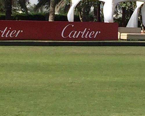 Cartier Polo Desert Palm