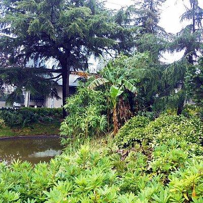 Jardim do Campo 24 de Agosto