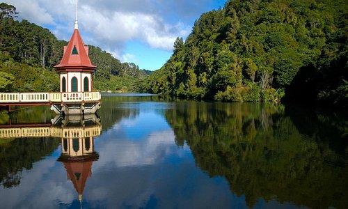 ZEALANDIA Lower Dame