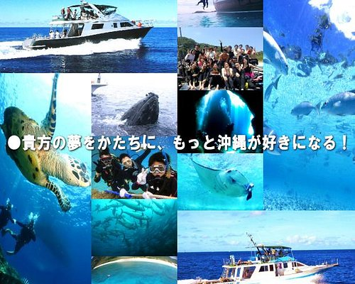 アナタの夢をカタチにもっと沖縄が好きになる!