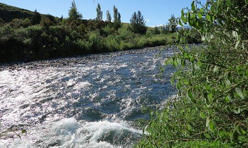 Just upstream of the bridge