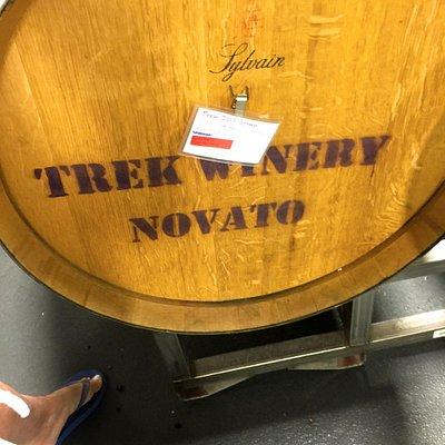 Trek Winery Novato, California