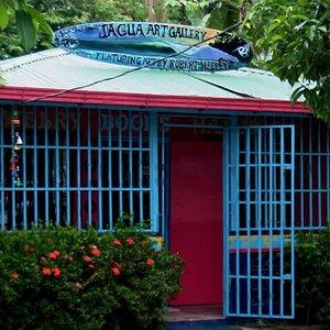 Jagua Store Arts & Crafts