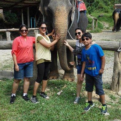 super cool elephant
