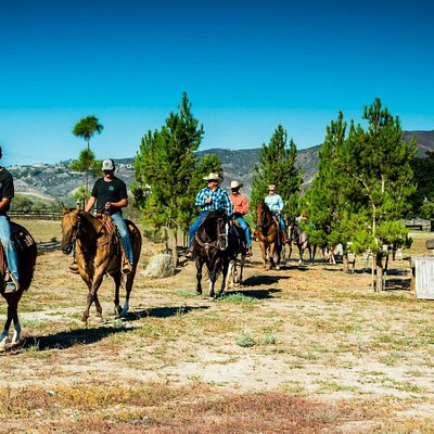 Trail Ride Temecula!! A beautiful taste of the country side :)
