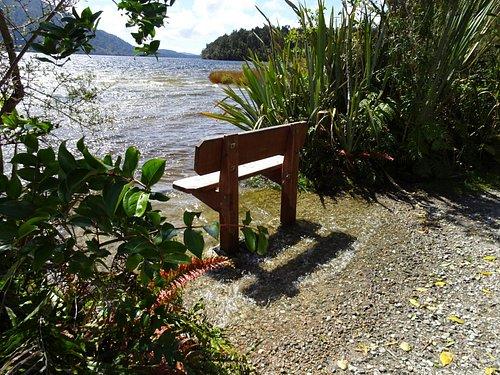 Lake view adjacent to Dorothy Falls
