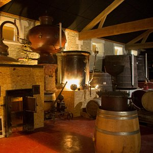 L'Alambic, pièce maitresse de l'Art Distillé