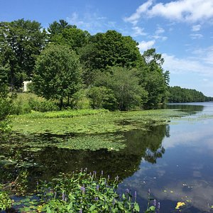 Lake Whitehall State Park - Pond Street