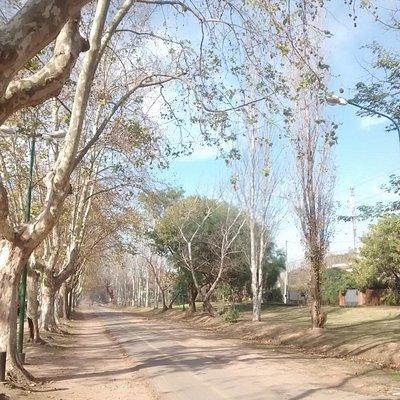 El corredor a finales del otoño