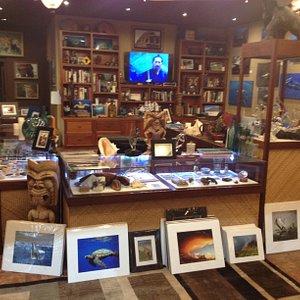 Large Variety of Marine & Wildlife Photography