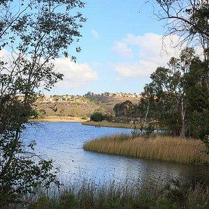 the lake - 2