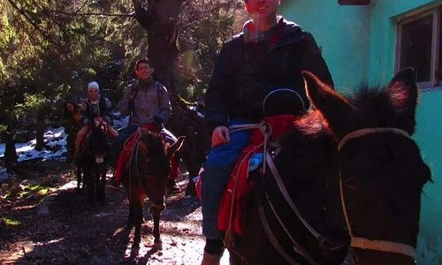 Horse ride up