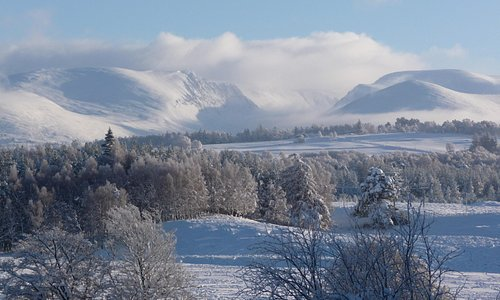 Deep Winter in the Cairngorms National Park