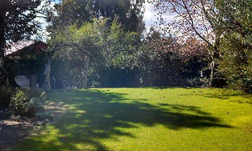 Grass areas