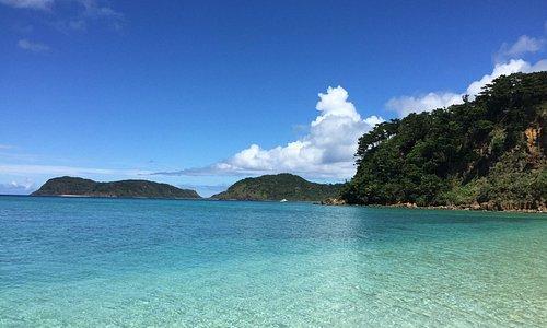 観光 西表 島