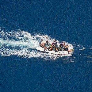 en route vers la faille de Poé accompagné des dauphins