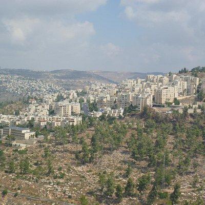 Иерусалимский Лес от комплекса Яд-Вашем