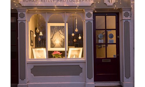 Gallery at Christmas