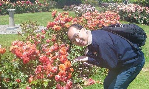 Lovely Rose Garden~