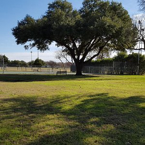 Tennis courts have nice shade