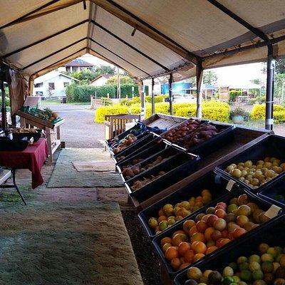 Maui Nui Farm