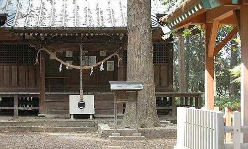 歴史がある神社のようです。