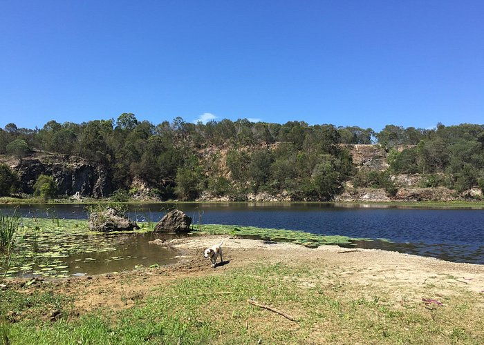 Daisy hill quarry with my dog :)