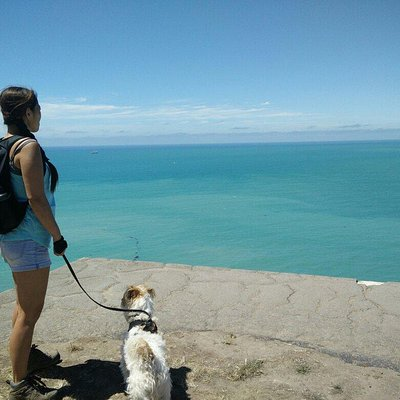 #TitanActivate Stunning views from our walk around Godley Head, Christchurch.