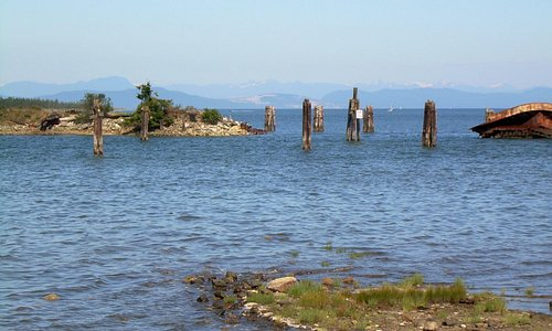 view from picnic area Hilton Rd, Royston Vancouver Island
