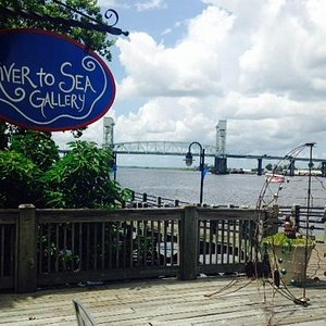 Along the banks of the Cape Fear River
