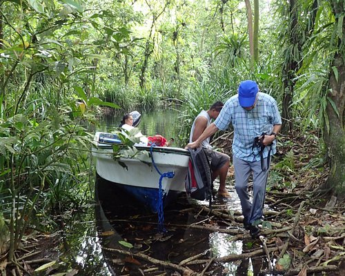After boating through the mangrove channels we disembark.
