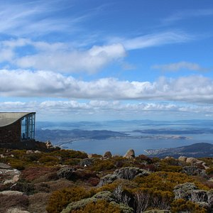 The view from Mt Wellington