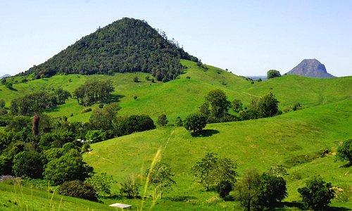 Mount Pinbarren National Park