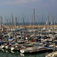 The Marina Herzliya