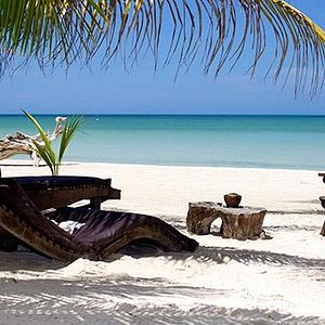 Isla Holbox Packages